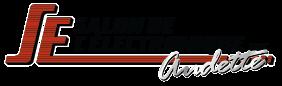 Salon de l'électronique Logo